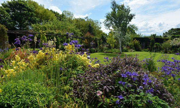 Caldy Open Gardens Raise £11,000!